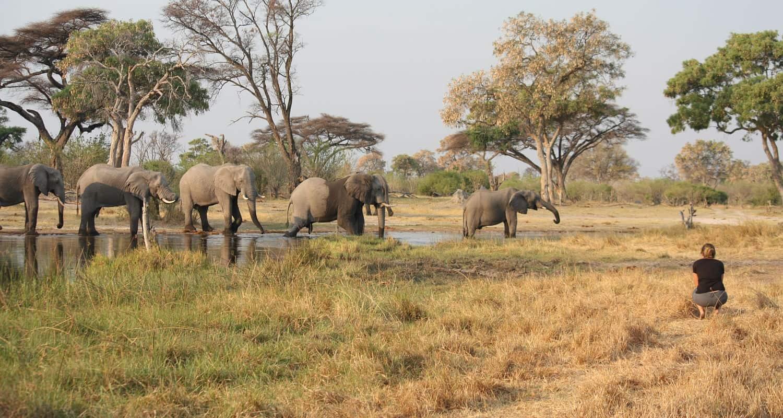 Een enkeltje Afrika